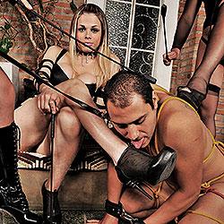 Kinky shemale domination gangbang.